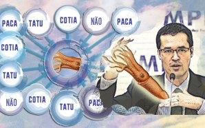 ilustração de Joana Brasileiro sobre imagem de Marcelo Camargo/(Agência Brasil)/ fotospublicas