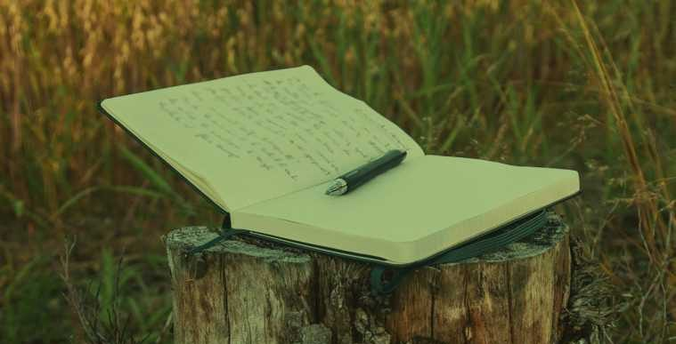 Proença-a-Nova: Biblioteca Municipal assinala Dia Mundial da Poesia