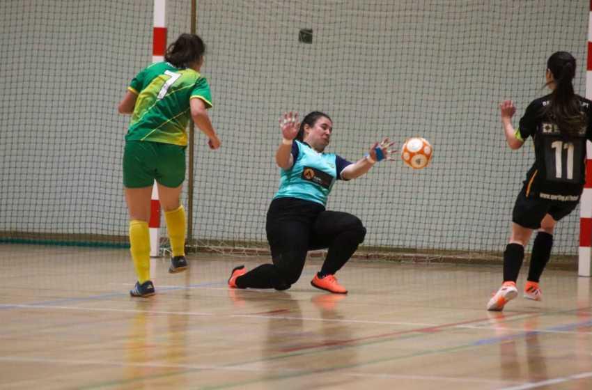 Desporto/Proença-a-Nova: Cai o pano sobre os distritais  de Futsal