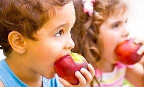 Oleiros: Regime Fruta Escolar arrancou esta semana