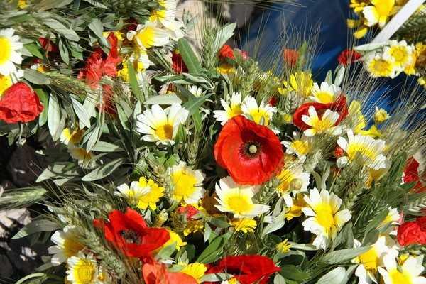 «Maio, mês das Flores, mês da Mãe, mês dos Amores e de Maria também.»