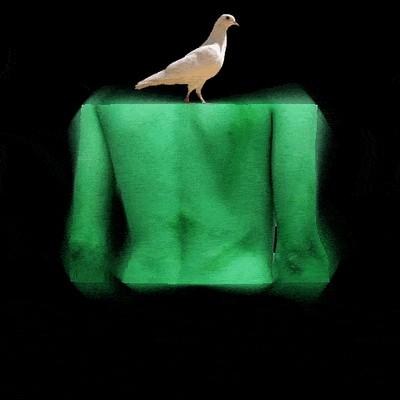 El primer Cartel preseleccionado en la modalidad de GRÁFICA, realizado por Willi Trapiche: Se llama IRAN, pero yo le pondría IRÁNNACE, o IRÁN RENACE, Josán Caballero.