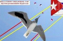 PAPALOTE del Blog EXILIO CUBANO UNIDO, de Todos por una Cuba Libre.