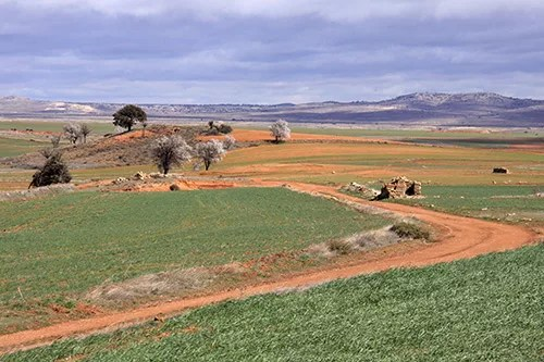 Agriculture in Spain