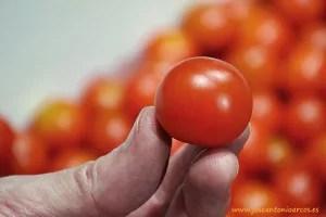 Tomates cherry de Zeraim, Corintia y Karelya