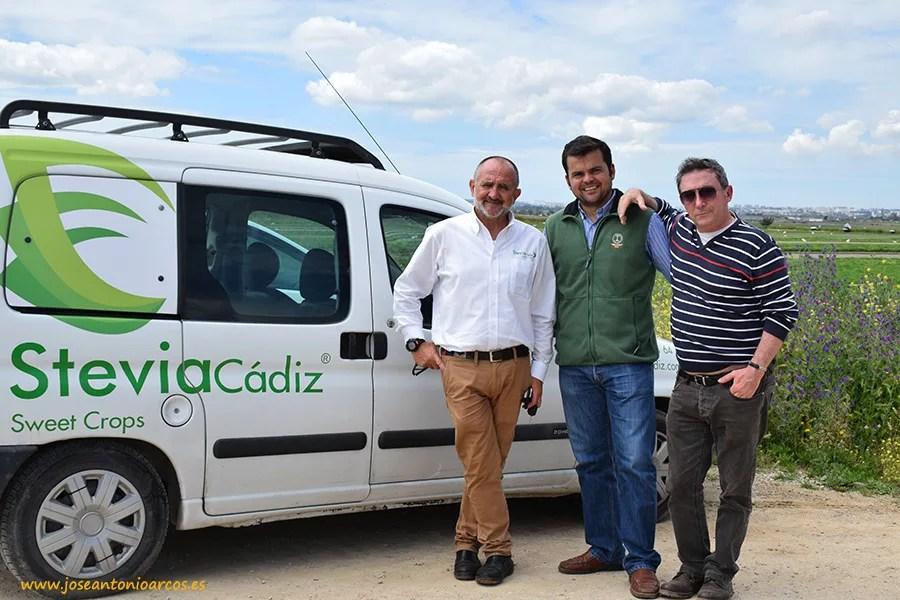 Stevia Cádiz en Jerez de la Frontera