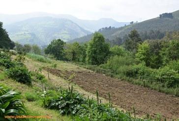 La Vizcaya agrícola. Descubriendo sus valles interiores (vídeo)