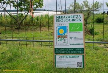 Recorriendo el País Vasco. II parte (vídeo)