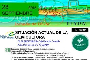 Día 28 de septiembre. Jornada 'Situación actual de la olivicultura'. Granada