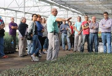 Grupo Jarico, de padres a hijos. Vivero de plantas y olivos