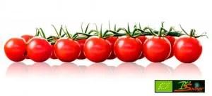 Tomate Cherry Piccolo