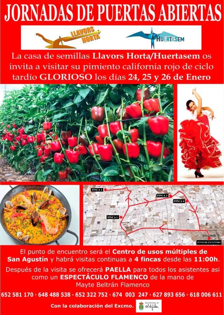 Llavor-Horta-Huertasem
