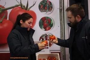 Iberica Younited Seminis De Ruiter Monsanto Almería.