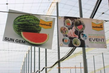 BASF compra Nunhems