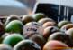 CASI y Universidad promueven un foro de agricultura sostenible
