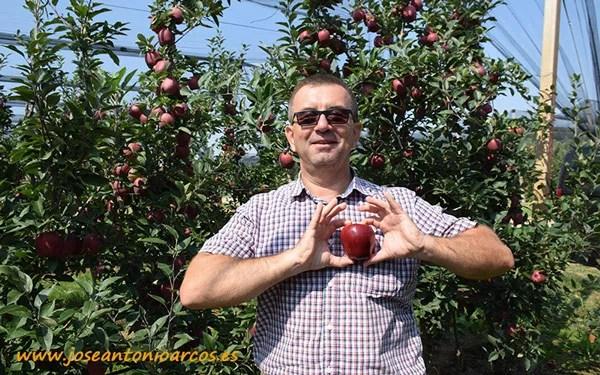 Zoran Bojanić con un fruto de Red Chief. Manzanas serbias.