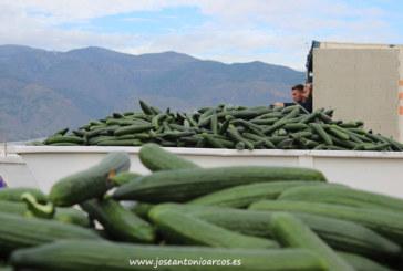 Agricultura Viva tira del carro