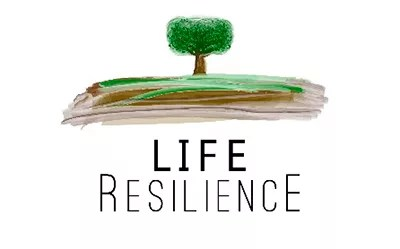 Life Resilience.