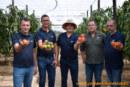 La mayor casa de semillas de Turquía se instala en Almería