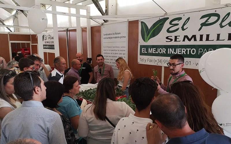 Feria Agroganadera de Los Palacios y Villafranca de Sevilla - joseantonioarcos.es
