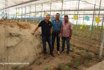 Herramientas biológicas en agricultura orgánica