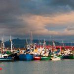 Barcos pesqueros e el puerto de Colindres