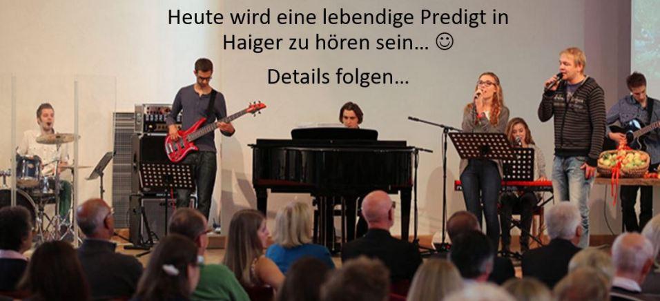 Haiger-EFG