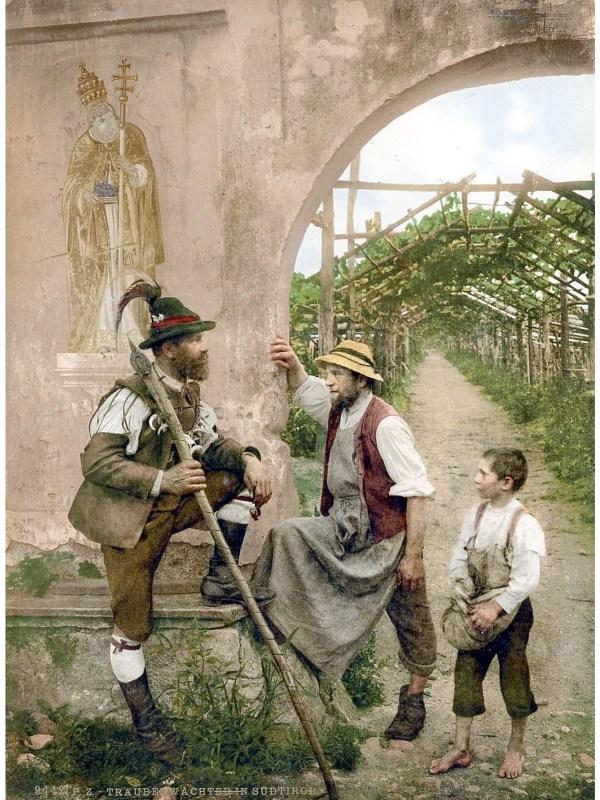 Meran 1890, Traubenwächter