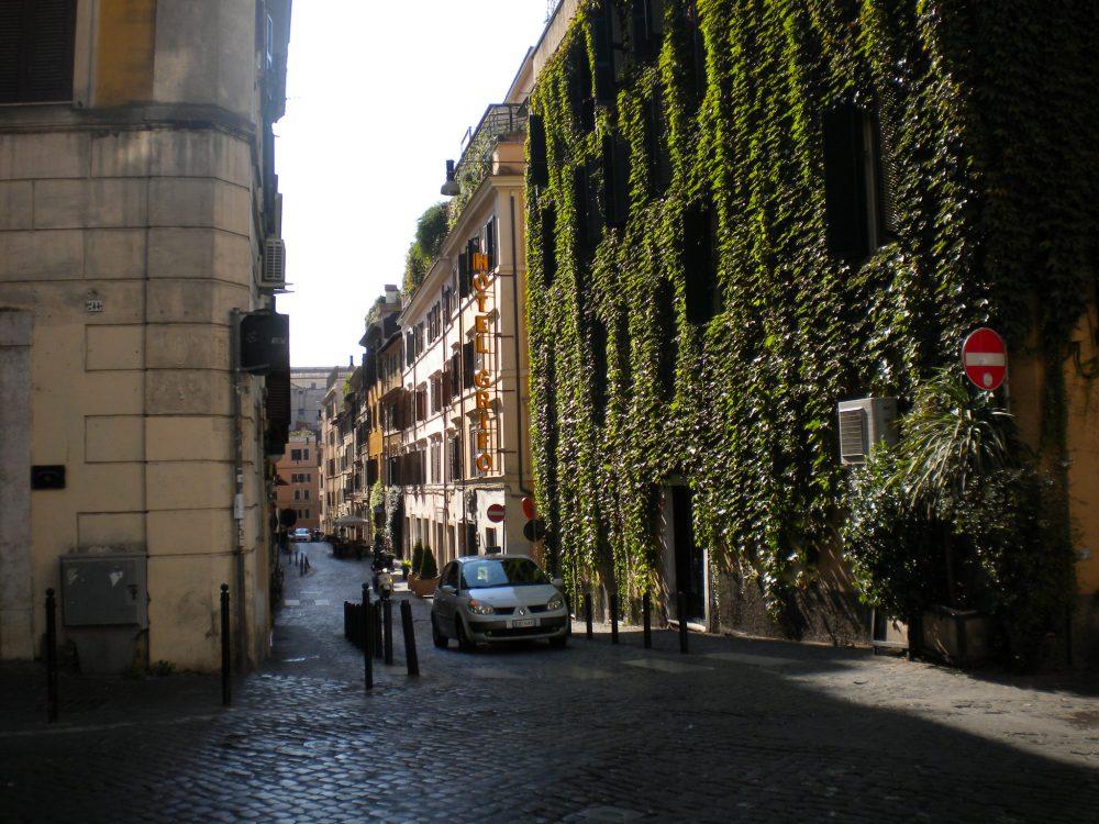 ivy on building along Italian street