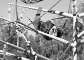 San DIego Zoo 0109