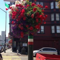 A Trip to San Francisco: Prison, Napa and more