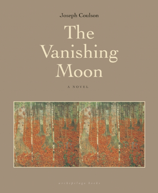 The Vanishing Moon book cover