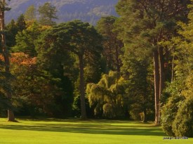 The lawns and gardens of Muckross House Killarney