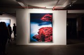 Richard Mosse - The Enclave (London)
