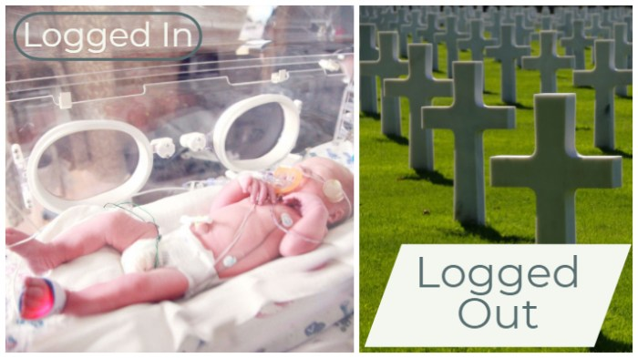 Logged In Logged Out josephkravis.com