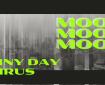 Mood Mood Mood Rainy Day Virus or is it
