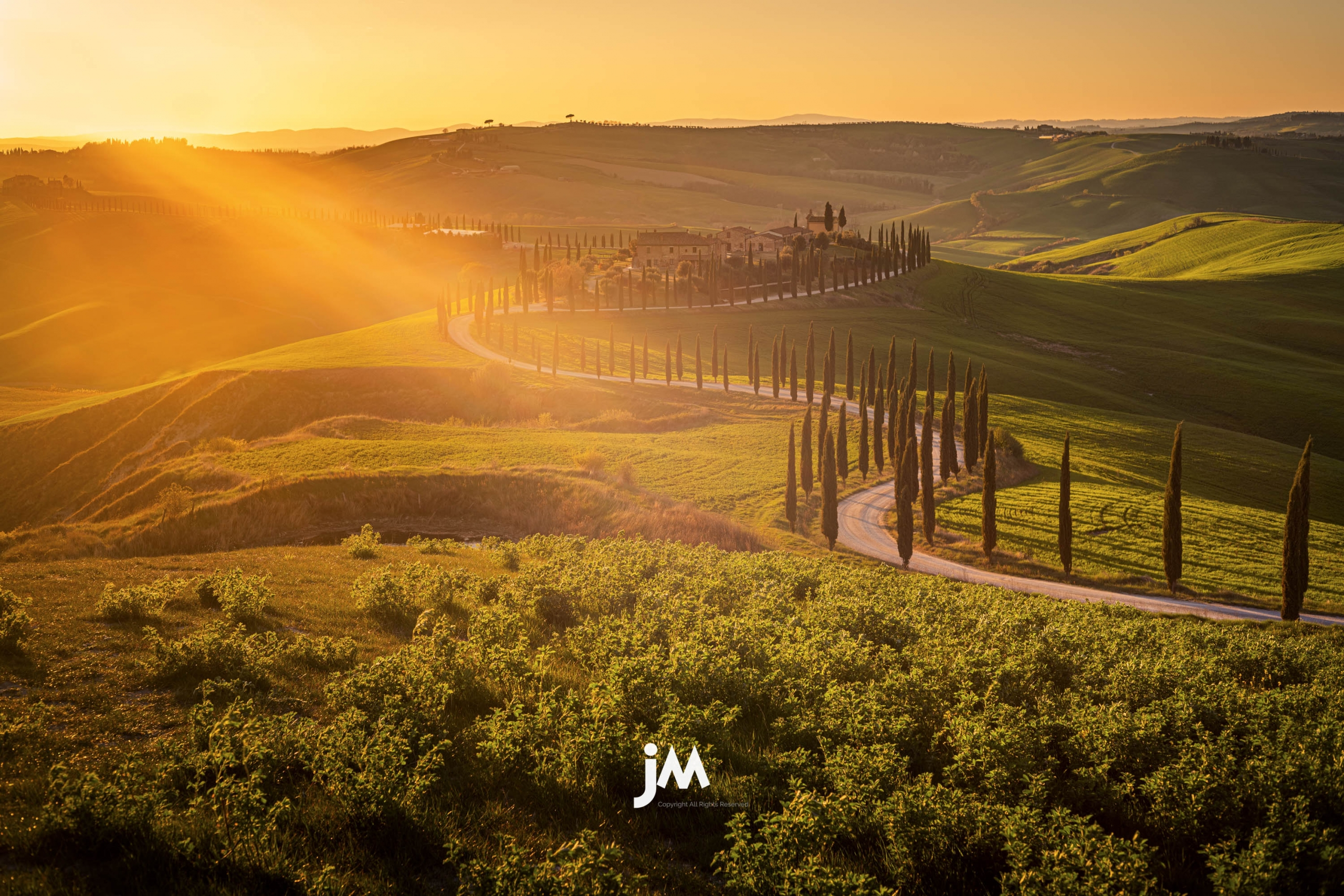 Italy, Tuscany Rolling Hill