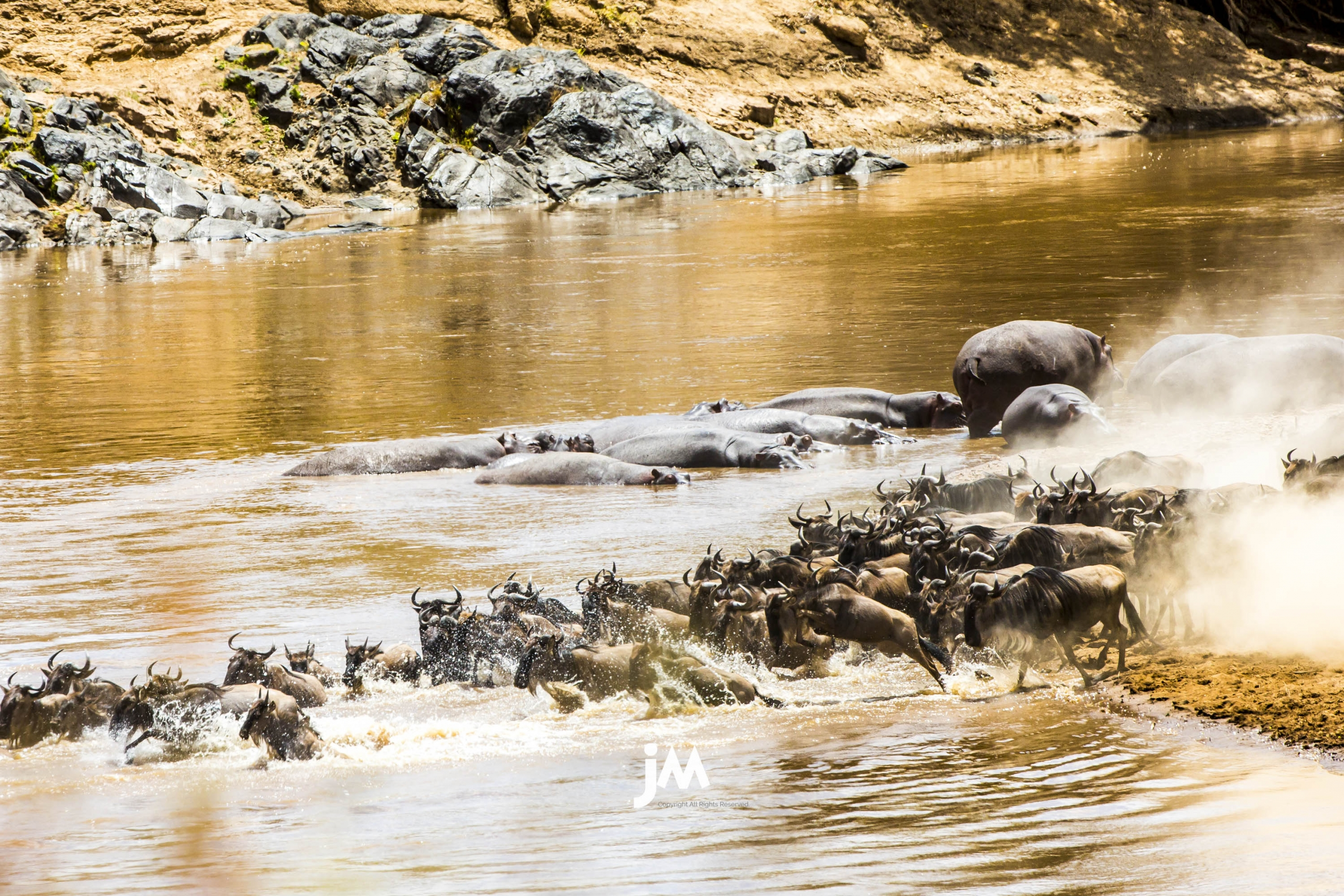 Kenya, Masai Mara Safari Photo Tour