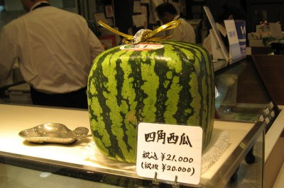 July 20, 2014: Eat Your (expensive) Fruit!