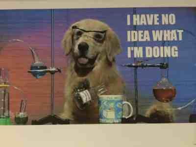 August 23, 2015: The Dog Days Of Dark Matter!
