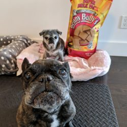 April 14, 2019: Suji Sunday!