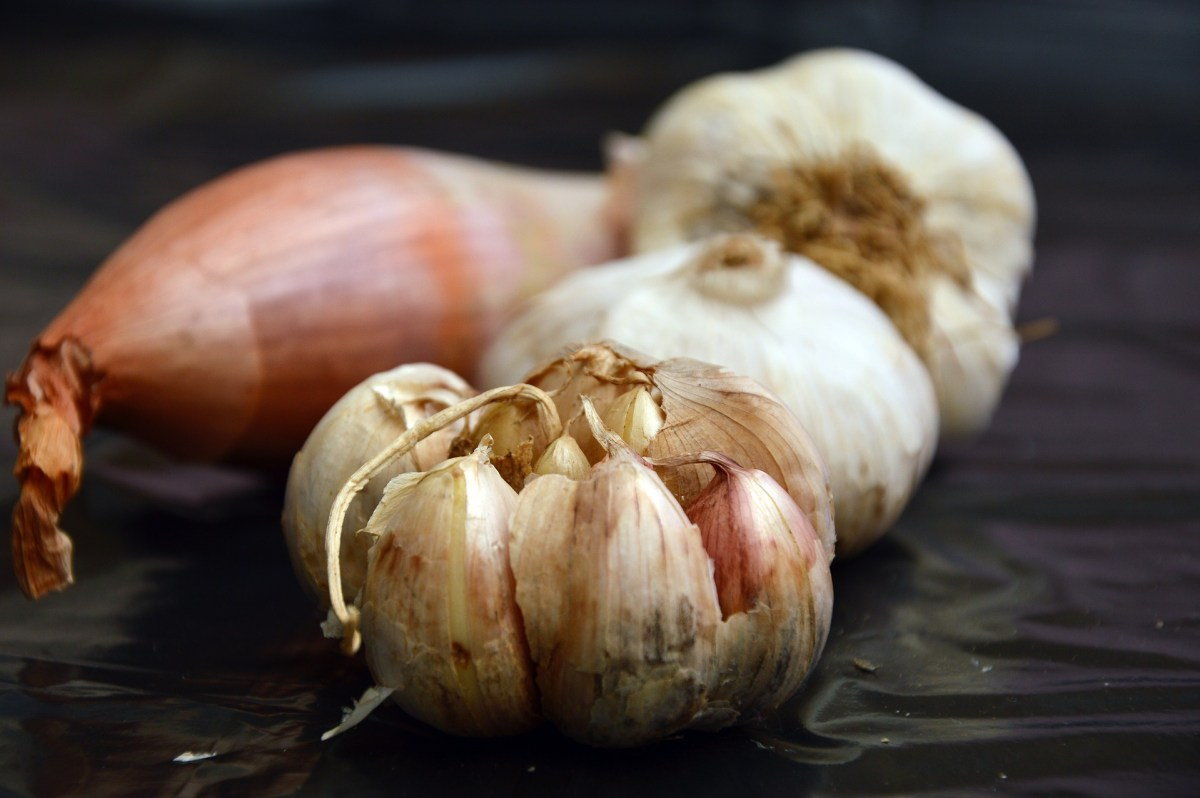 Garlic Benefits to Health
