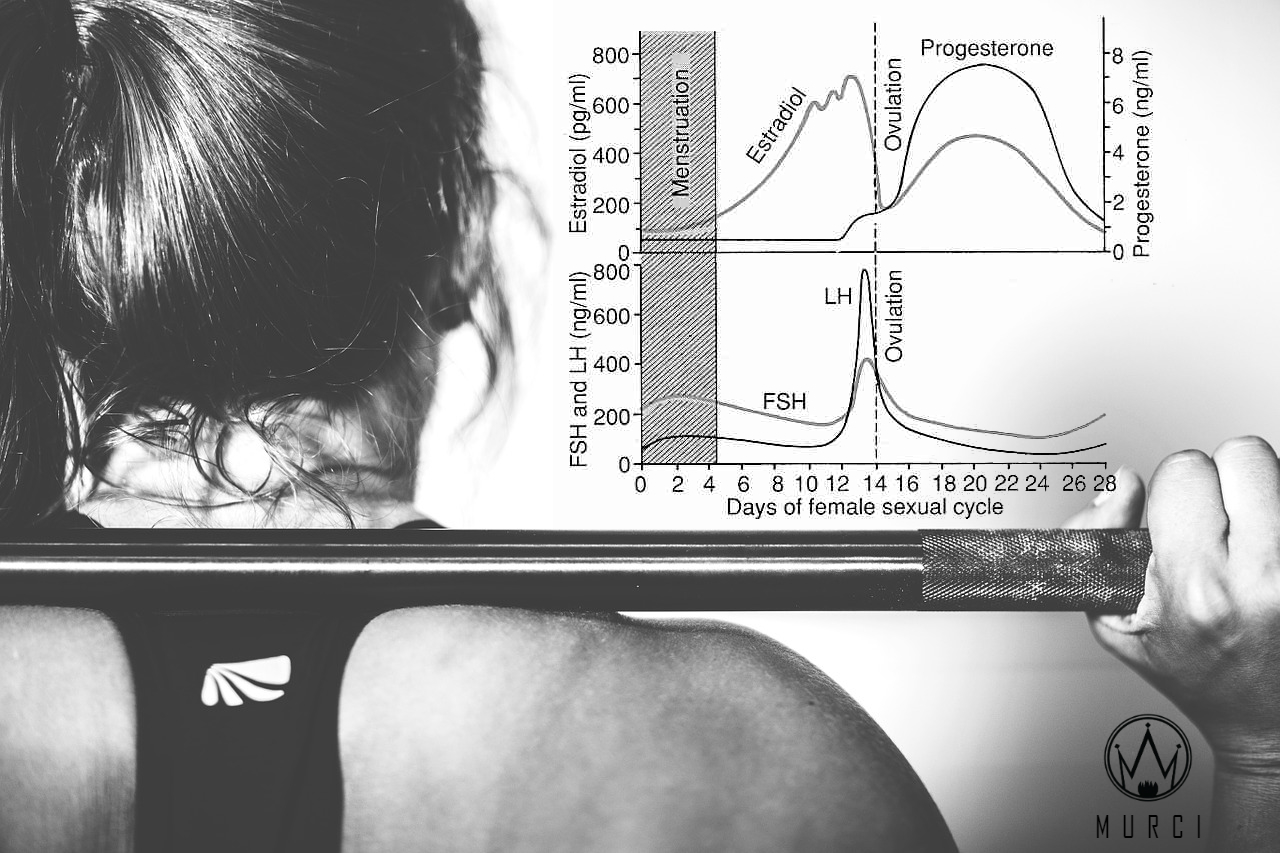 The Menstrual Cycle, Muscle Growth, and Fat Loss