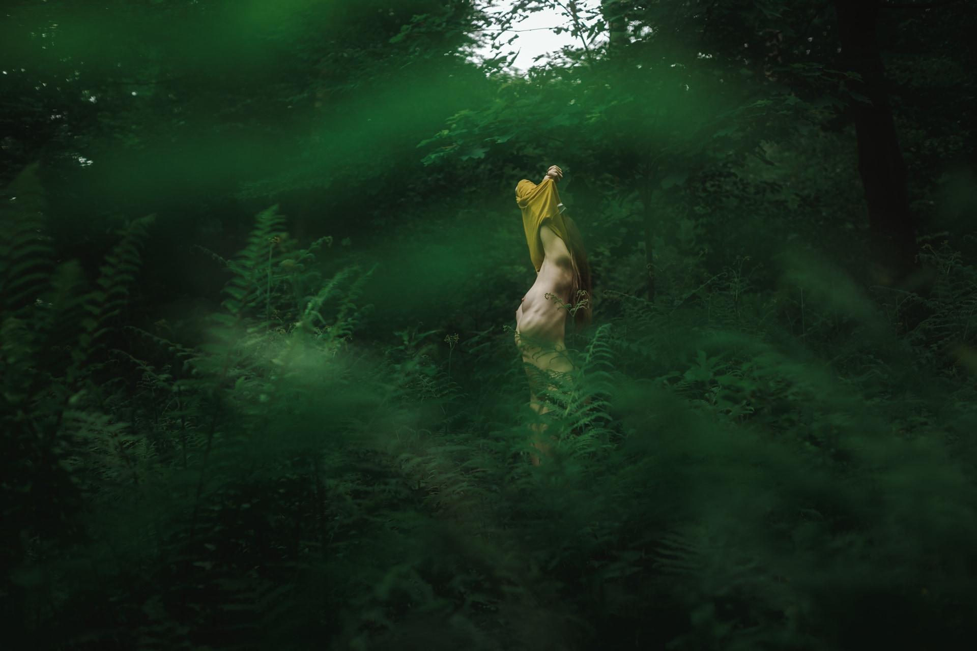 Mél - Forest - v1-photo-foret-nue-artistique-fougere-2