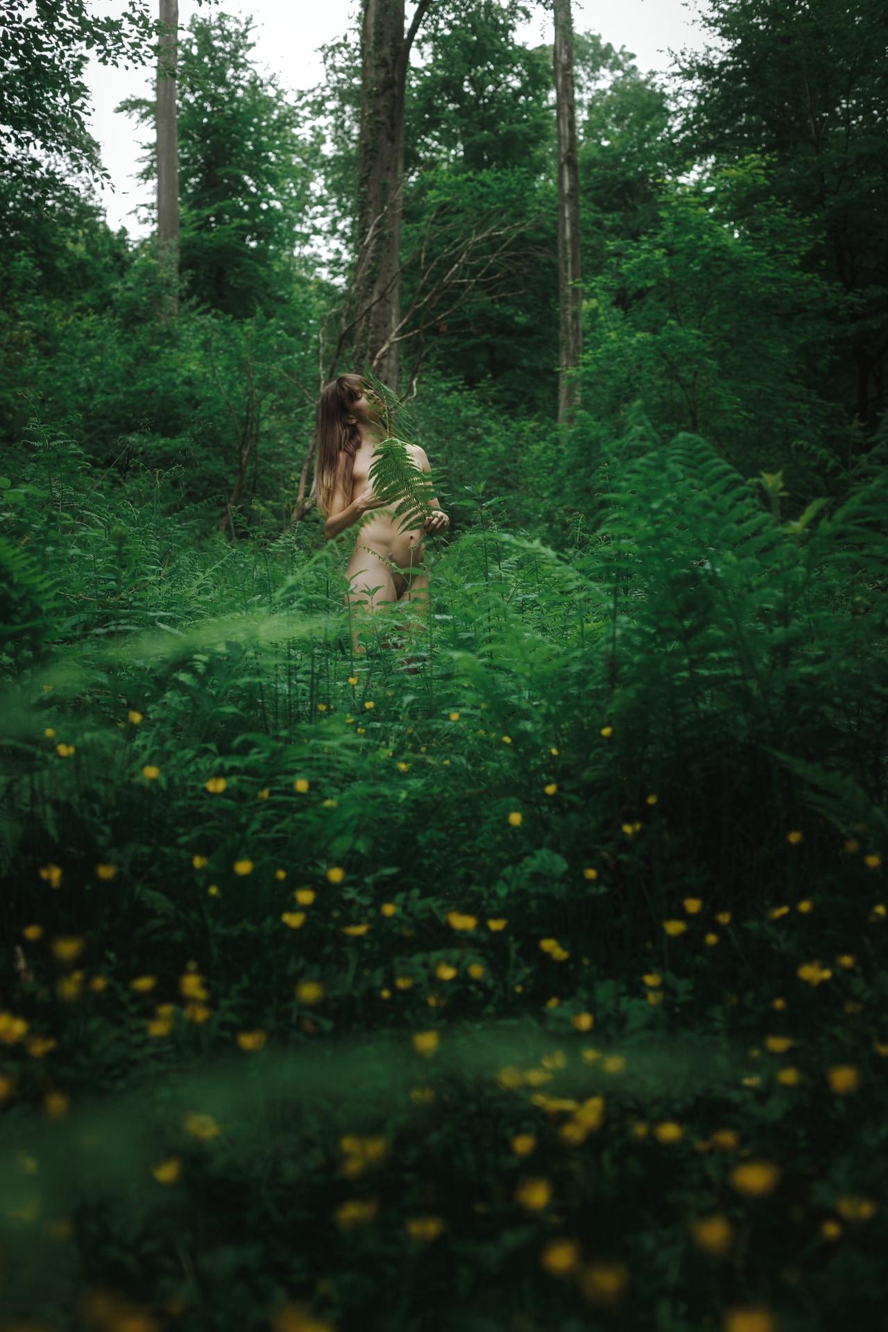 Mél - Forest - v1-photo-foret-nue-artistique-fougere--3