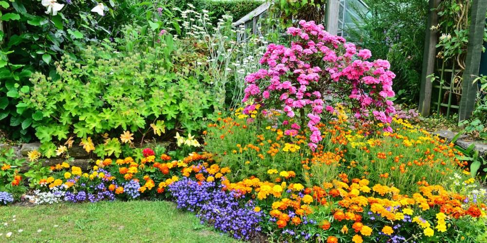 Los Angeles Gardening Tips:  April Garden To-Do List