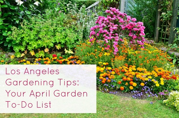 Los Angeles gardening tips for April