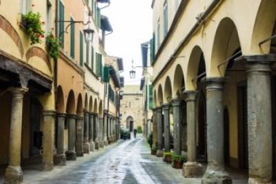 Tuscany - Casentino, Poppy
