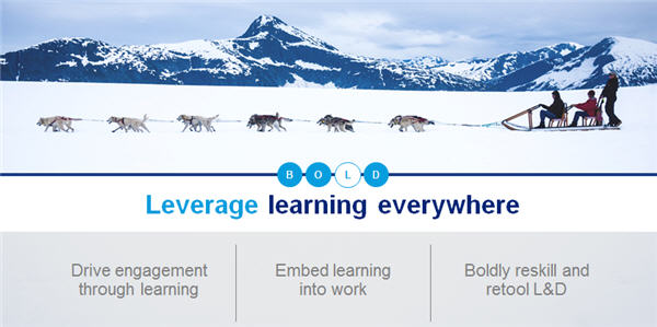 Leverage Learning Everywhere