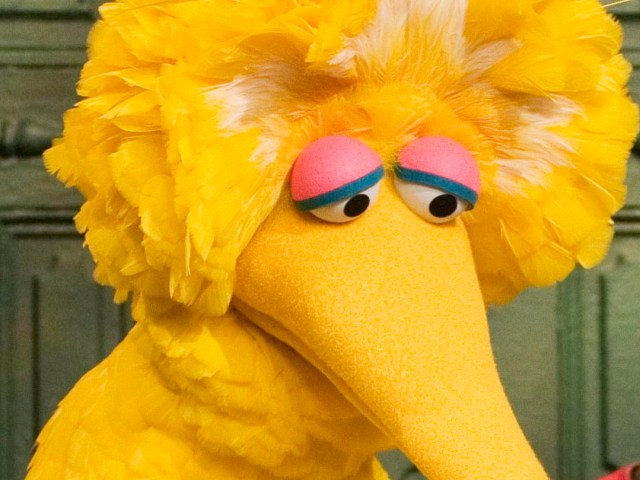 Has big bird sold our?